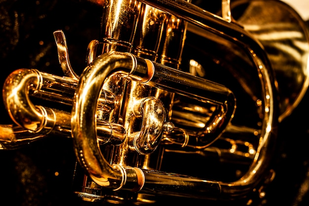 Cornet musical classique Photo Premium