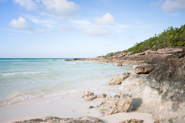 Côte longue plage sauvage Photo gratuit