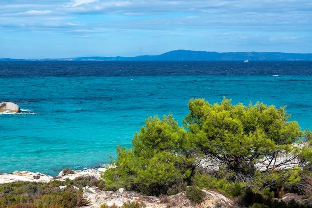 Côte De La Mer égée Avec Verdure Autour, Rochers, Buissons Et Arbres, Eau Bleue Avec Des Vagues, Grèce Photo gratuit