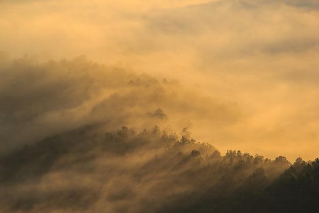 Couche de montagnes dans la brume au lever du soleil. Photo Premium