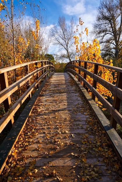Coucher de soleil automne pont de bois parque de turia Photo Premium