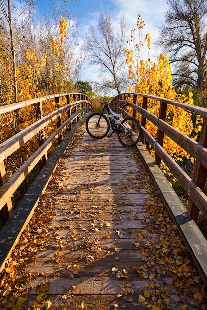 Coucher de soleil en automne sur le pont parque de turia Photo Premium