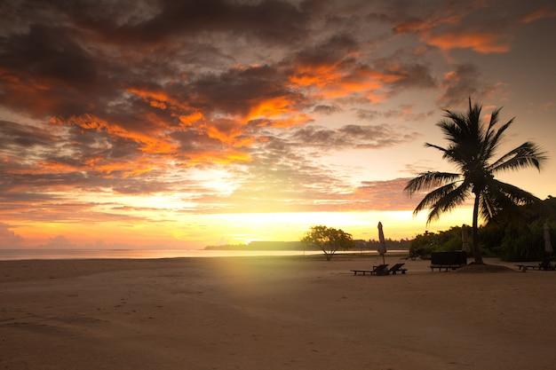 Coucher De Soleil Sur L'océan Sur L'île Tropicale Photo Premium