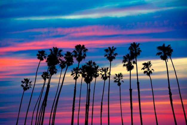 Coucher de soleil palmiers en californie avec ciel coloré Photo Premium