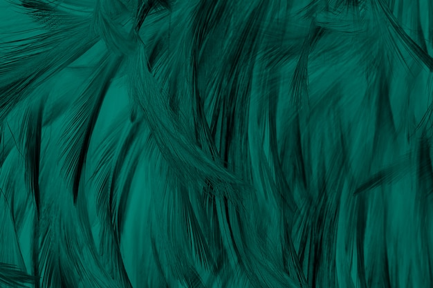 Couleurs de belles couleurs clés de la floride verte ton ton fond de texture de plume, couleurs tendances Photo Premium