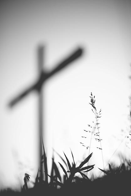 Coup De Gris Vertical D'un Champ Herbeux Avec Une Croix Floue Photo gratuit