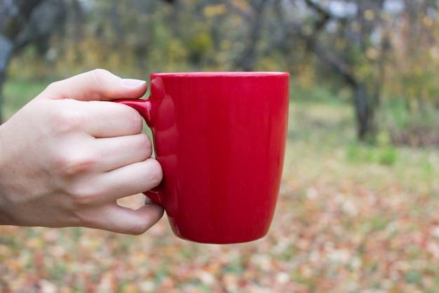 Coupe rouge à la main en automne Photo Premium