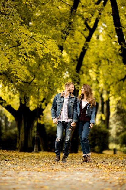Couple D U0026 39 Amoureux Dans Le Parc D U0026 39 Automne