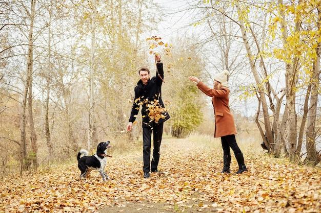 Couple amoureux se promenant dans le parc forestier d'automne avec un chien épagneul Photo Premium