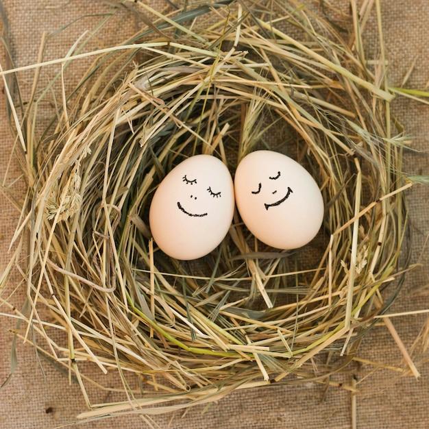 Couple heureux en amour. des œufs. Photo Premium