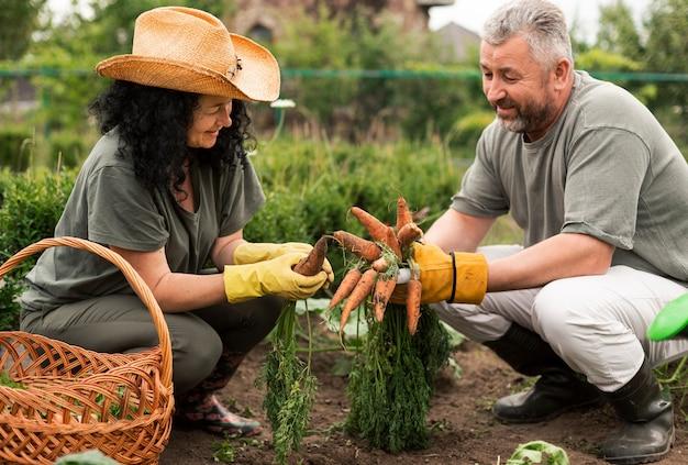 Couple senior récolte des carottes Photo gratuit