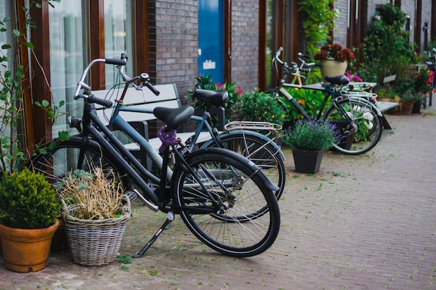 Cours confortables d'amsterdam, bancs, vélos, fleurs dans des bacs. Photo gratuit