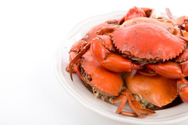 Crabes Cuits à La Vapeur Sur La Plaque Blanche Photo gratuit
