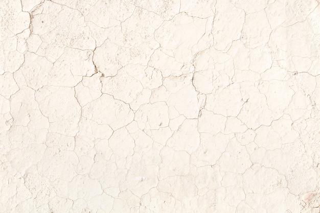 Cracked terre beige pâle Photo gratuit