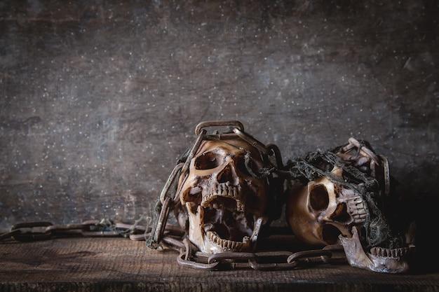 Crâne avec chaîne en nature morte photographie Photo Premium