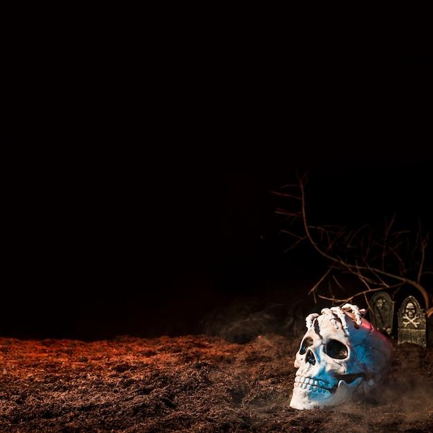 Crâne lugubre blanc au sol Photo gratuit
