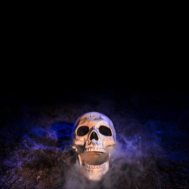 Crâne sombre posé sur le sol Photo gratuit