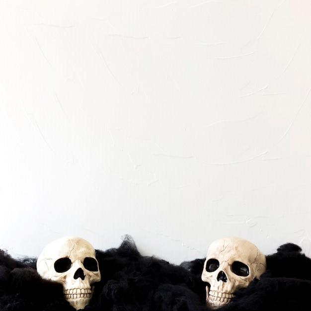 Crânes humains sur matière noire Photo gratuit