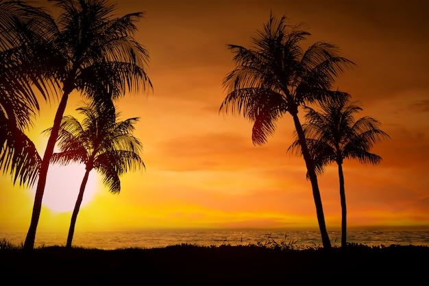Crépuscule et coucher de soleil Photo Premium