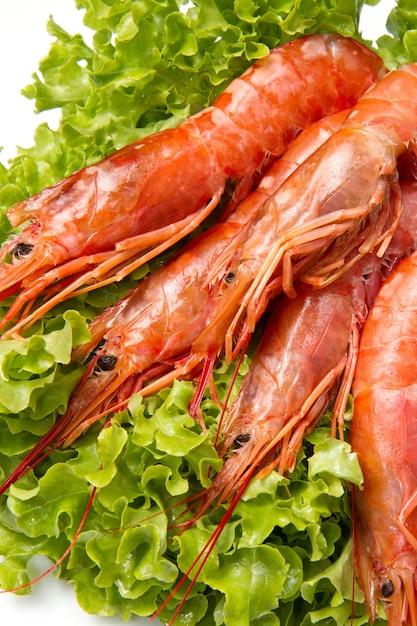 Crevettes sur une salade fraîche Photo Premium