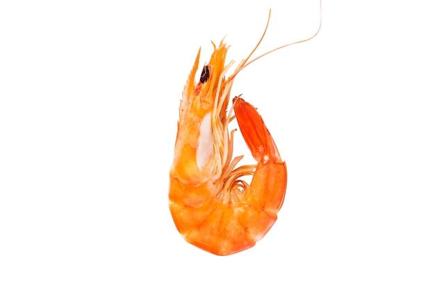 Crevettes tasty sur fond blanc Photo gratuit