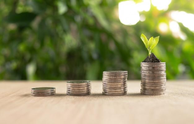Croissance De L'argent économiser De L'argent. Pièces D'arbre Supérieur Pour Montrer Le Concept De Croissance Des Affaires Photo Premium