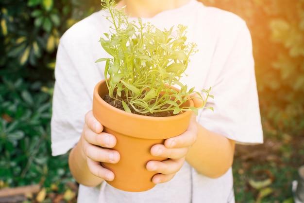 Crop enfant avec plante verte en pot Photo gratuit