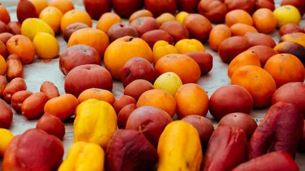 Cultivars de tomates, variété colorée de tomates biologiques Photo Premium
