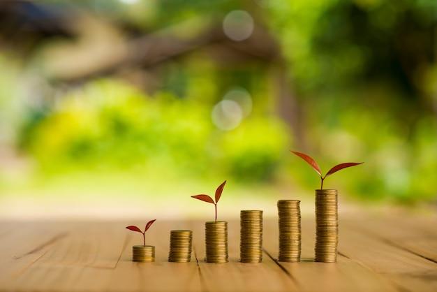 Cultiver une usine sur une rangée de monnaie, csr en entreprise Photo Premium