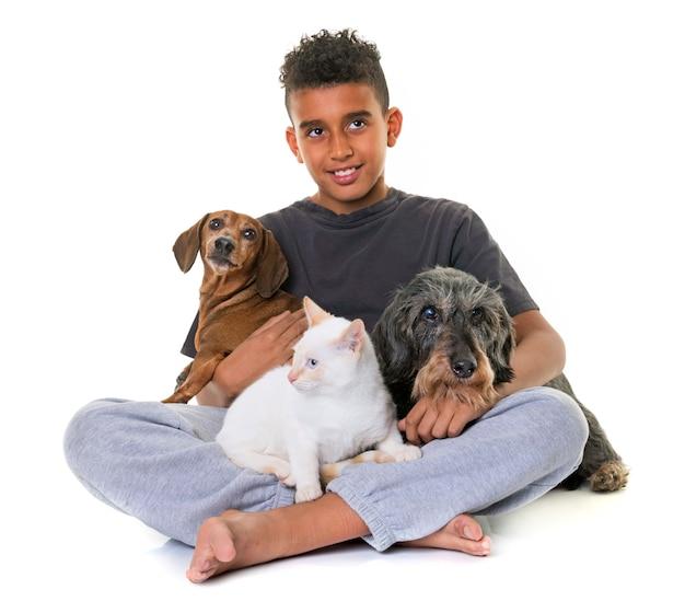 Dachshunds, chaton et garçon Photo Premium