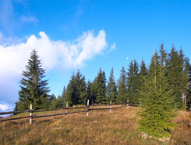 Début De L'automne Matin Dans La Montagne Des Carpates, Ukraine Photo Premium