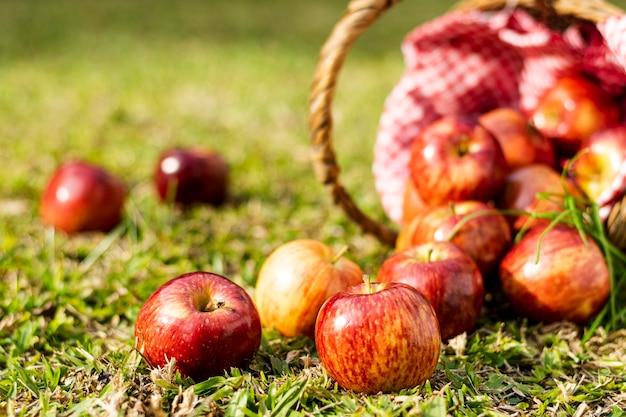 Délicieuses pommes rouges en gros plan de panier de paille Photo gratuit