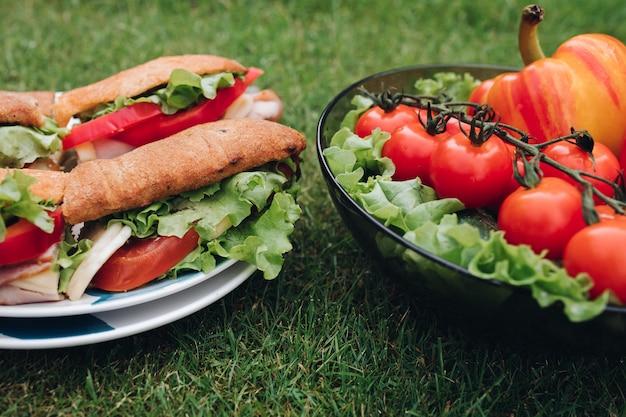 Délicieux sandwiches aux légumes. bol de légumes écologiques sains sur l'herbe. Photo Premium