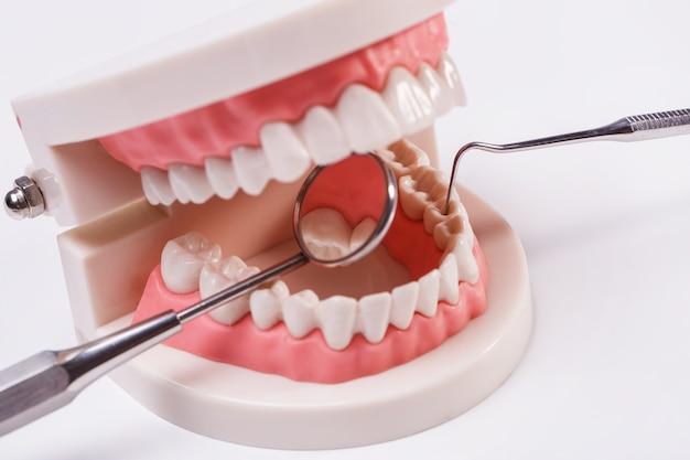 Dents blanches Photo gratuit