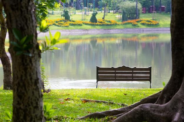 Derrière la chaise dans le parc, avec des arbres et des pelouses et des marais Photo Premium