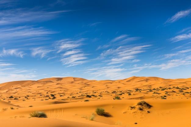 Désert du sahara, maroc Photo Premium