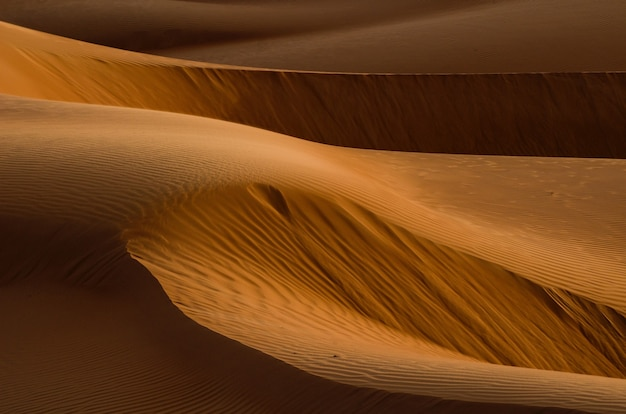 Désert Avec Dunes De Sable Photo gratuit