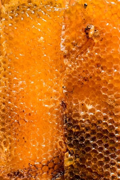 Détail nid d'abeille Photo gratuit