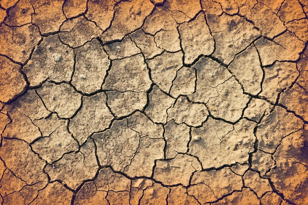 Détails du sol fissuré sec Photo Premium
