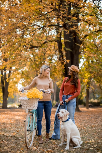 Deux amies marchant dans le parc automne jaune avec chien et vélo Photo Premium