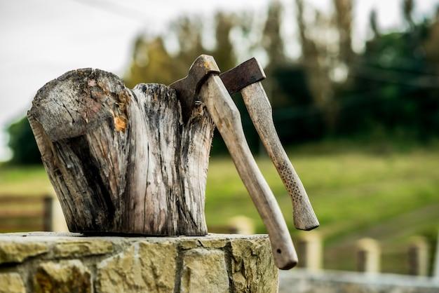 Deux axes coincés dans le tronc en bois d'un arbre. scène rurale. Photo Premium
