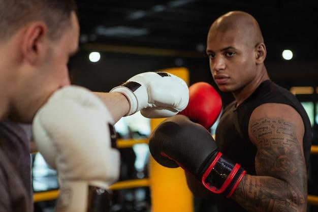 Deux boxeurs masculins travaillant ensemble au gymnase de boxe Photo Premium