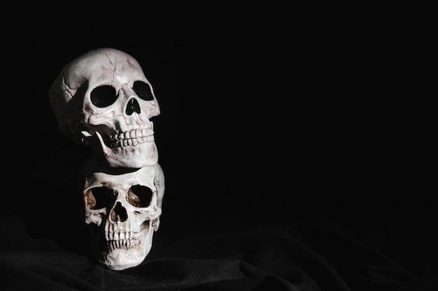 Deux crânes surlignés empilés Photo gratuit