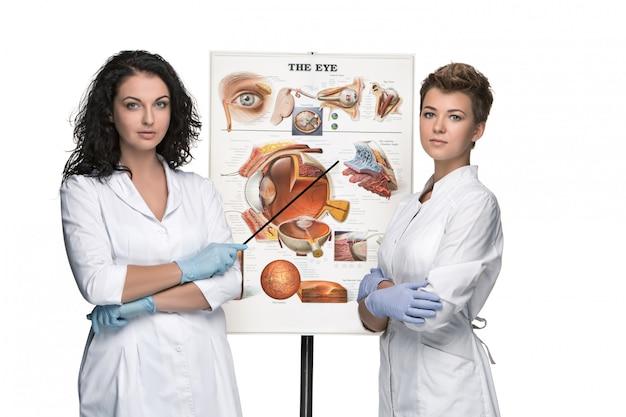 Deux Femmes Opticiennes Ou Oculistes Racontant La Structure De L'œil Photo gratuit