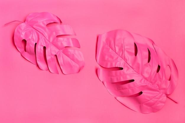Deux feuilles de palmiers tropicaux roses de monstera Photo Premium