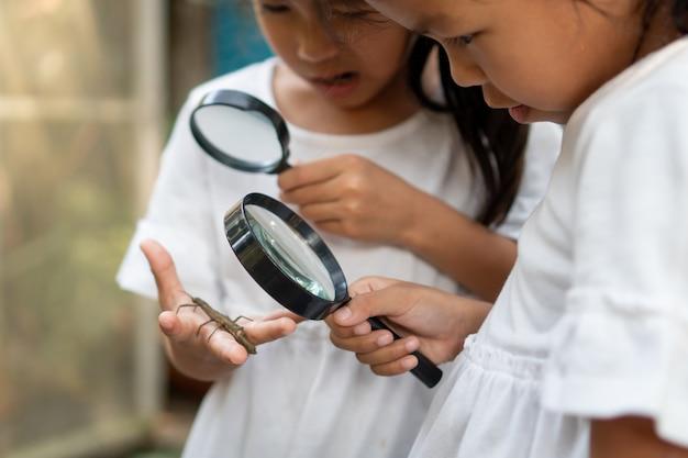 Deux, filles, utilisation, loupe, regarder, apprendre, sauterelle, bâton Photo Premium