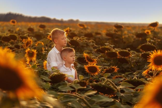 Deux frères et soeurs mignons étreignant et s'amusant champ de tournesols. Photo Premium