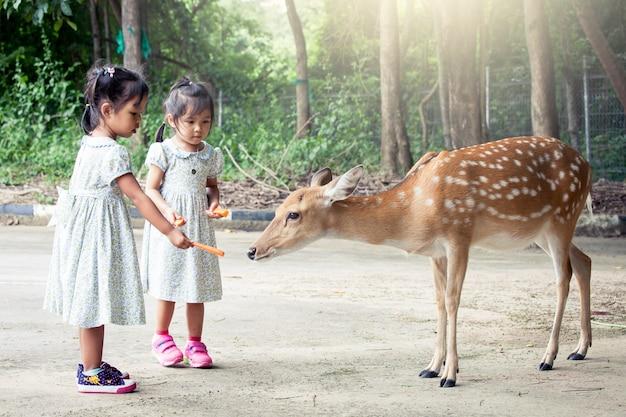 Deux Petites Filles Asiatiques Nourrir Les Cerfs Dans Le Zoo Photo Premium