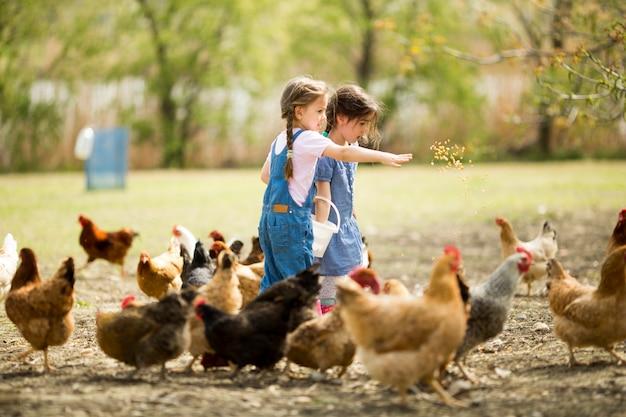 Deux Petites Filles Nourrir Les Poulets Photo Premium