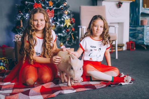 Deux petites soeurs jouent avec un mini cochon près d'un arbre de noël Photo Premium